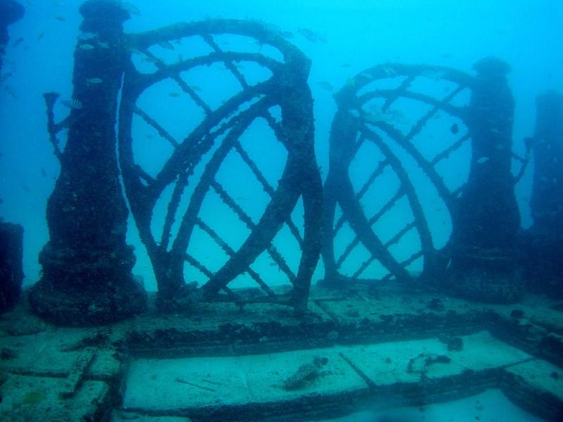Neptune Memorial Reef2